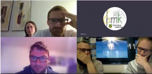 Videokonferenz4