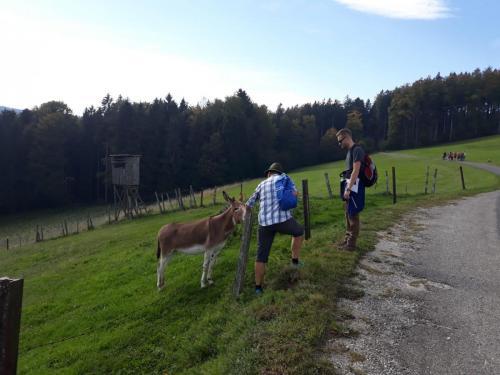 Wandertag (6)