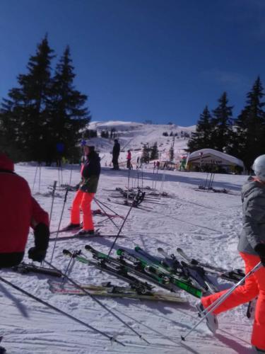 Skitag2019 (4)