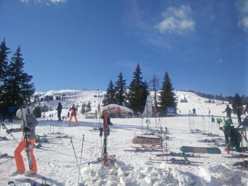 Skitag2019 (5)